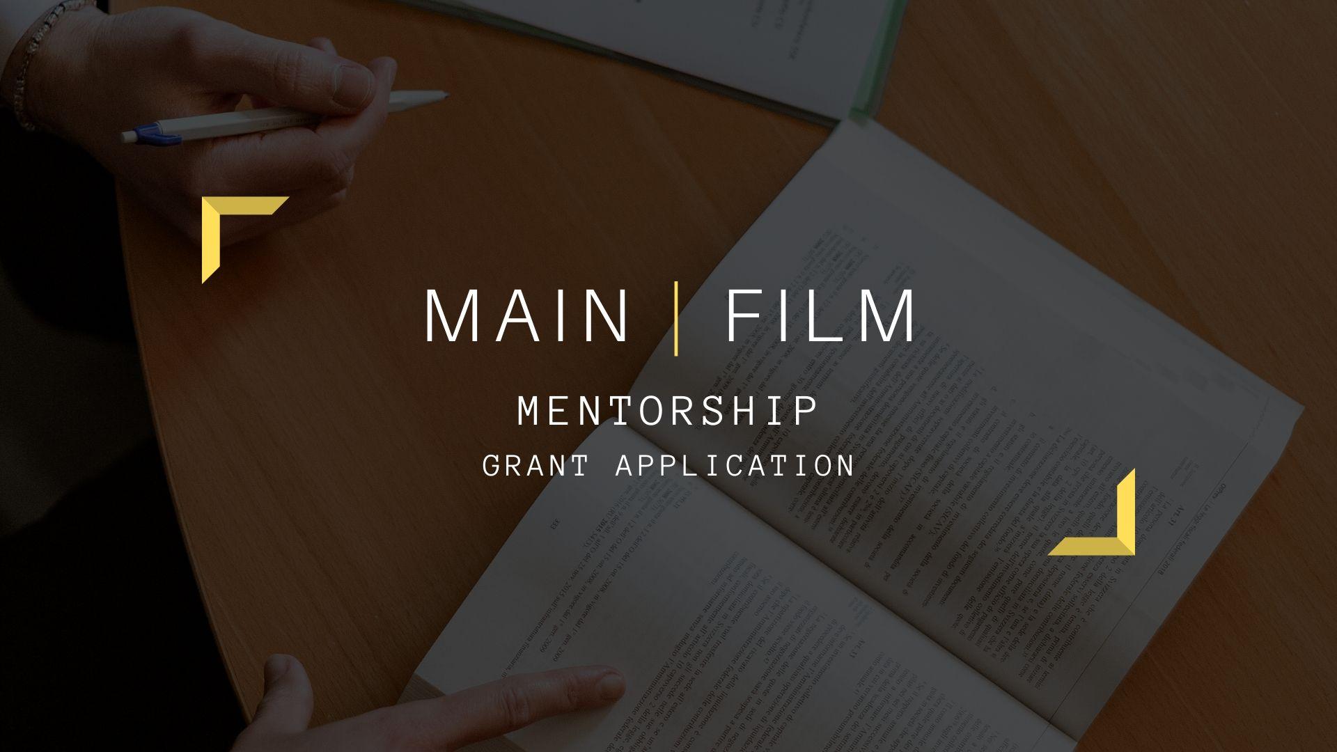 Mentorship for grant application